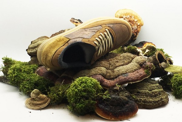 nat-2-fungi-shoe-livinghomelifestyle-002
